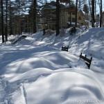 Тени на свежевыпавшем снегу.